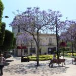 Costa-de-Almeria-Bravo-Tours-4